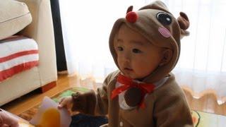 2012/12/23 【Y:1歳2ヶ月】 トナマーくん.