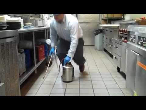 Commercial Pest Control Tucson - Essential Pest Control