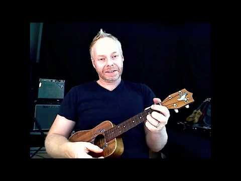 2 chord song ! beginner ukulele lesson #4