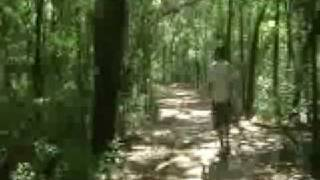 Disc Golfing at Wanee 2008 Thumbnail