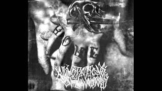 annotations of an autopsy stage breaker new song 2011