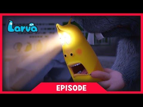 LARVA - FLASH LIGHT | Cartoon Movie | Cartoons For Children | Larva Cartoon | LARVA Official