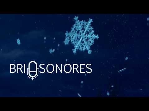 Brio Sonores -