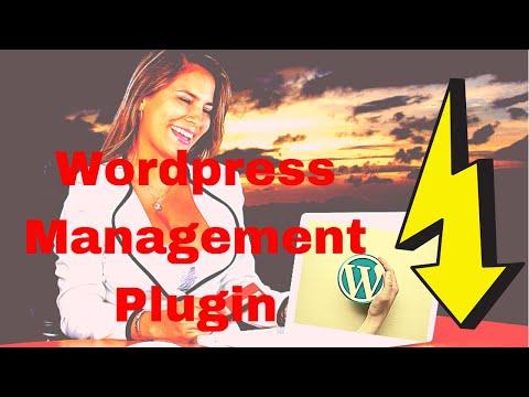 Top WordPress Plugins for Agencies - Best Plugin To Manage Multisite WordPress Single Dashboard