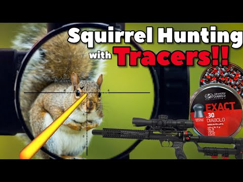 Squirrel Hunting with Tracers