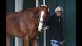Justify Odds on Favorite at position 7 - 2018 Preakness Stakes Post Positions