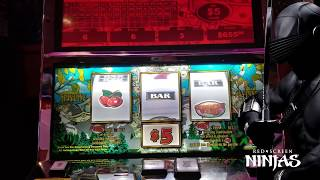 VGT SLOTS - BACK TO BACK TO BACK RED SCREENS MAX BET JACKPOT!