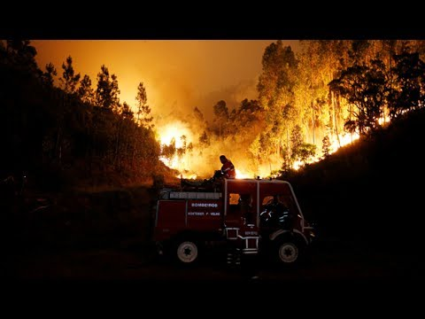 Portugal forest fires kill 62