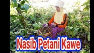 Download lagu KAWE PAGARALAM COFFE HARVEST PAGARALAM CITY MP3