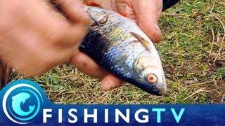 Pike Fishing Tips: Bill Hancock - Fishing TV