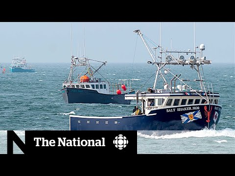 Arrests Made In Dispute Between Mi'kmaw Lobster Fishery And Non-Indigenous Fisherman