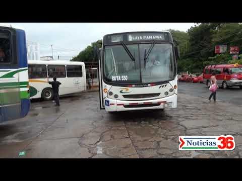 Noticias Transportes La Pampa