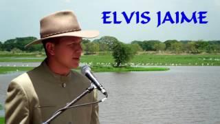 Elvis Jaime - viejo recuerdos llaneros ( KARAOKE )