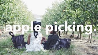 Apple Picking WITH MY LITTLE ONES.