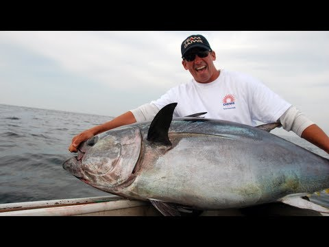 Wicked Tuna Fishing On Stellwagon Bank