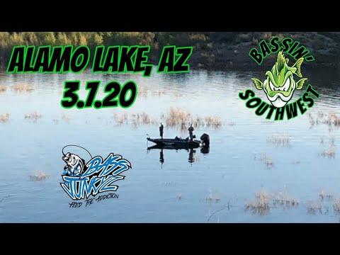 Bass Junkyz Alamo Lake, AZ 3.7.20  Finally Some Good Fishin'!!!