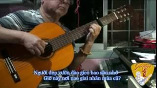 HOA ĐÀO NĂM TRƯỚC (Nguyễn Hiền & Lê Dinh)