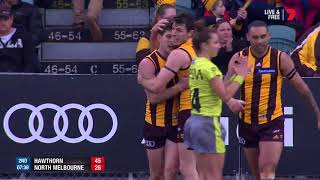 Round 21 AFL - Hawthorn v North Melbourne Highlights