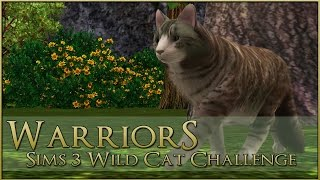 Clawing Away at the Clan Territory! || Warrior Cats Sims 3 Legacy - Episode #3