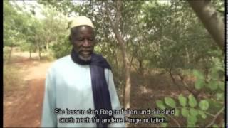 Trailer: Der Mann der die Wüste aufhielt