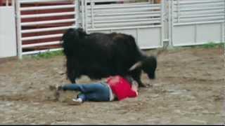 jackass 2 - yak charge