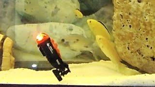 INCREDIBLY micro scale RC SUBMARINE gets unboxed & tested -Christmas 2019 Gift Idea
