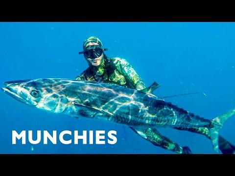 Spearfishing In Australia - Adventure Food