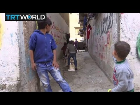 Palestine Refugee Aid: US cuts contribution to UN relief programme