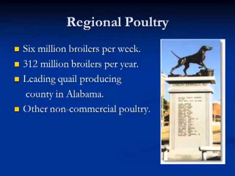 Dr. Joel Cline - The Role of the Diagnostic Laboratory in the Poultry Industry