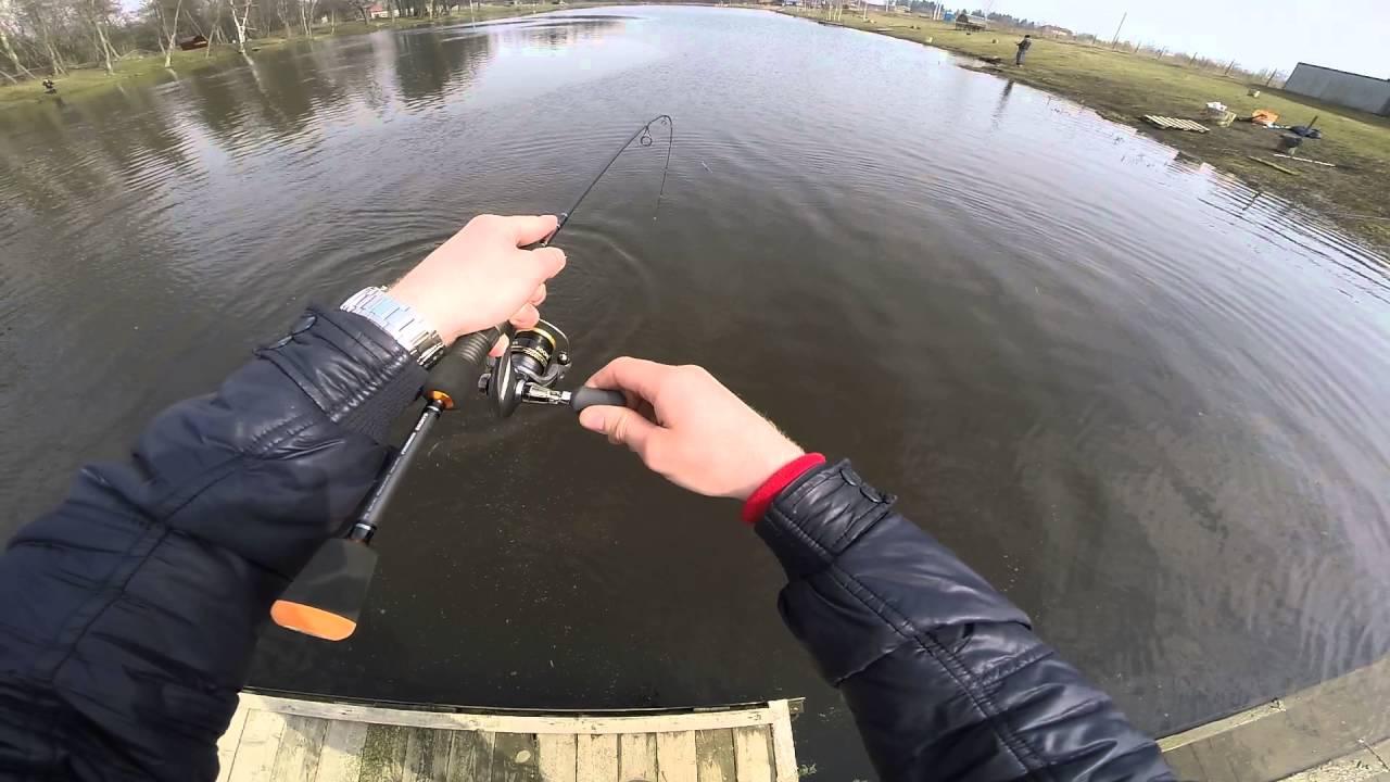 Пруд пионерский рыбалка форум