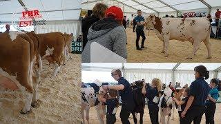 Festival de l'élevage 2018 : du haut niveau, de la jeunesse et de l'action