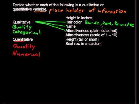 What are Qualitative and Quantitative Variables - Business Statistics Tips
