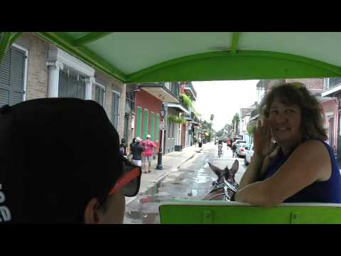 Narrated Horse Drawn Carriage Tour Of French Quarter In New Orleans
