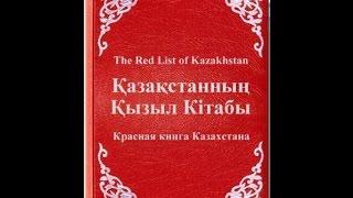Животные и растения Казахстана занесённые в Красную книгу