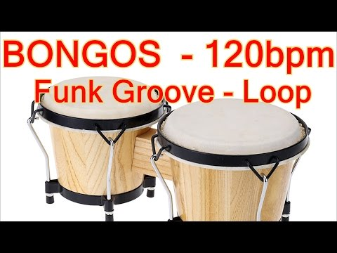 BONGOS Sound - Funk Beat / Groove Loop - 120bpm