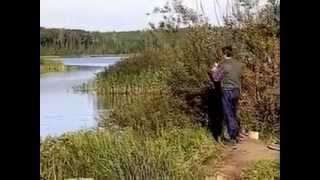 Ловля сазан,карп.Кубань.Диалоги о рыбалке №05