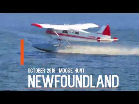 Newfoundland Moose Hunt October 2018 HD