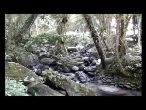 Chad Brih's Travel Video: Wulai
