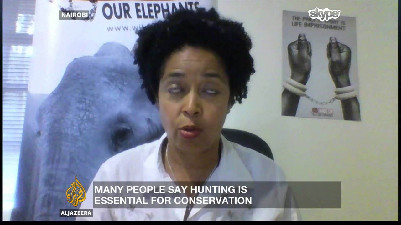 Inside story trophy hunting under fire youtube