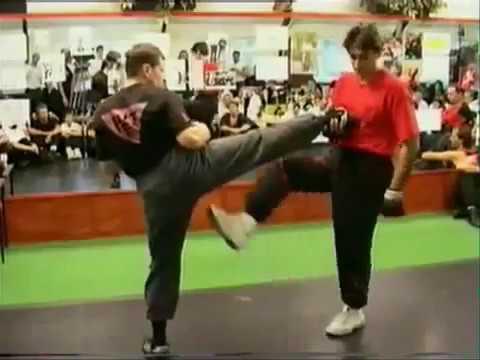 Wing Chun Explanation by Sifu Emin Boztepe