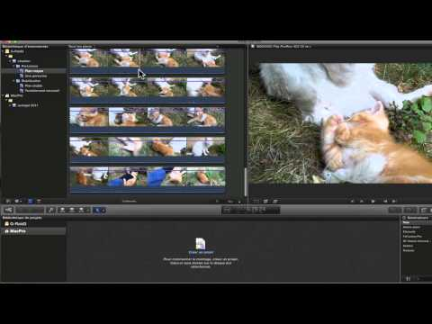 Final Cut Pro X #2. Base montage : Importer