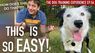You Won't Believe My Dog's NEW Trick!