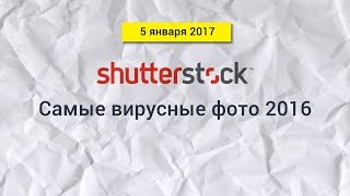 Shutterstock blog / 5.01.2017 / Самые вирусные фото 2016 года(Contributor blog Оригинальная статья https://www.shutterstock.com/blog/viral-photos-2016 https://www.facebook.com/Shutterstock/ ..., 2017-01-12T17:20:25.000Z)