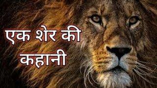 एक शेर की रोमांचक कहानी///by bharati academy