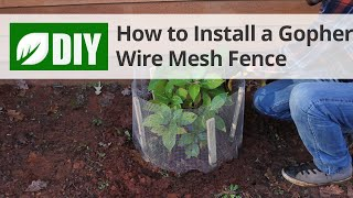 How to Install a Gopher Wire Mesh Fence