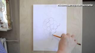 Самоучитель рисования рисуем виноград(как нарисовать виноград карандашом, для начинающих https://vk.com/samoyxitelrisovania., 2015-08-12T15:41:49.000Z)