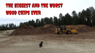 The biggest and the worst wood chip pile in the world! DONT put thi...