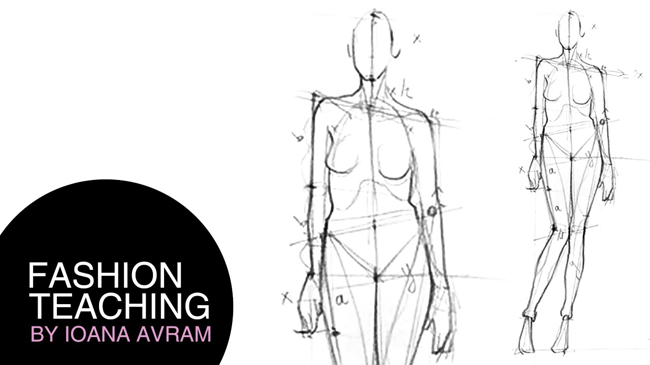 How To Draw The Proportions Of The Human Body Youtube