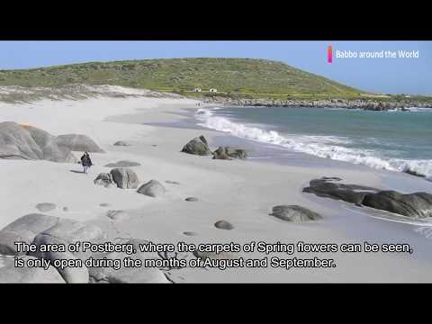 West Coast National Park - South Africa