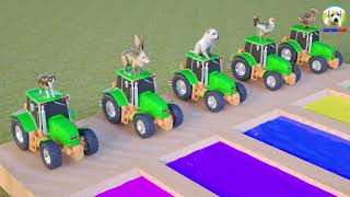 Learn Colors Learn Animals with #Truck Car and water colors Cartoon for Kids